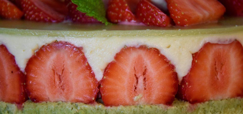 fraisier 7
